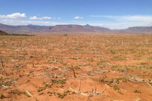 'El Niño Puts 26.5 Million Children at Risk in Eastern and Southern Africa'