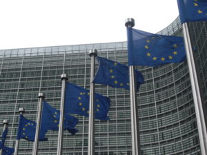 La 10e édition des Journées européennes du développement mondial et la coopération à Bruxelles
