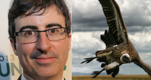 John Oliver v. Medical debt vultures