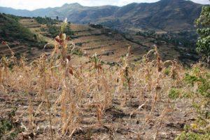 'Monster' El Niño Subsides, 'Monster' La Niña Hitting Soon