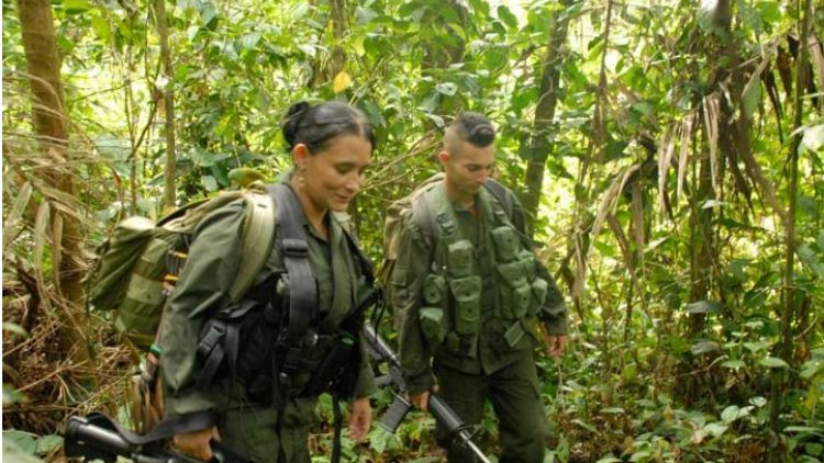 Colombie. «Veillée de paix» pour les guérilleros des FARC16