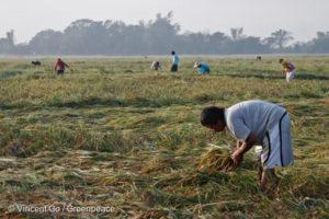 Catastrophes climatiques : les pollueurs doivent rendre des comptes en justice
