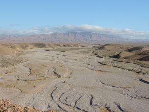 Combattere desertificazione e siccità: un nuovo progetto