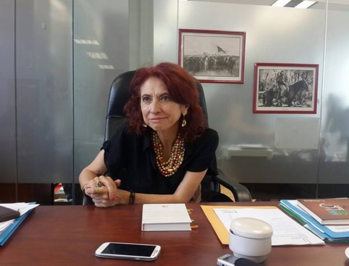 Vidas dedicadas 7: Por un mundo sin guerras, María Augusta Calle