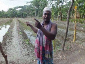 Peces y plantas se alían contra el cambio climático en Bangladesh