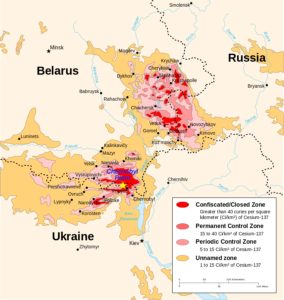 Risk of another Chernobyl or Fukushima type accident plausible, experts say