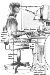 The upright ergonomic chair