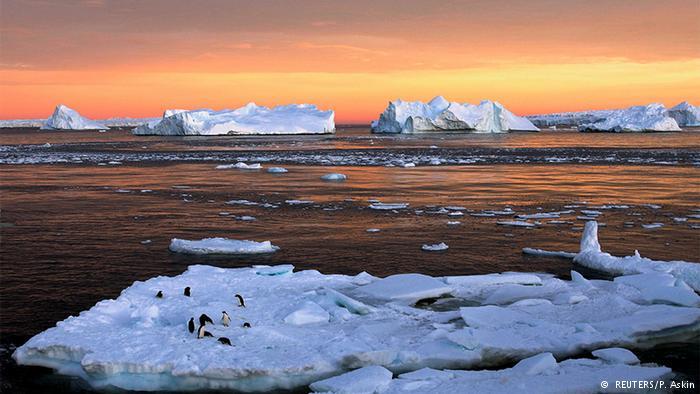 Weg ist frei für bislang größte Meeresschutzzone