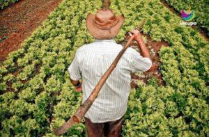 Agricultores de cinco provincias comparten experiencias de agroecología y debaten sobre políticas públicas para sus desarrollos