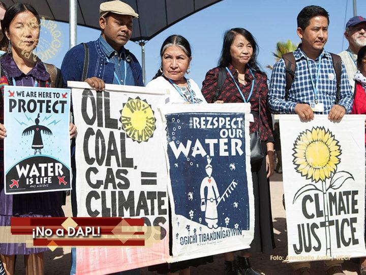 Indígenas en la COP22 se solidarizan con protesta del pueblo Sioux