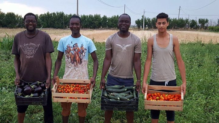 Casa Sankara: Eine Initiative gegen die Ausbeutung von Migranten in der italienischen Landwirtschaft