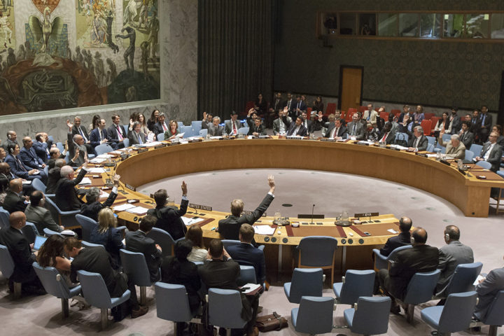 Imagem UN Security Council