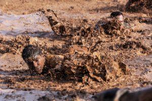 Vorgangsnummer 42 – Eine Reaktion auf Anwerbungsversuche der Bundeswehr