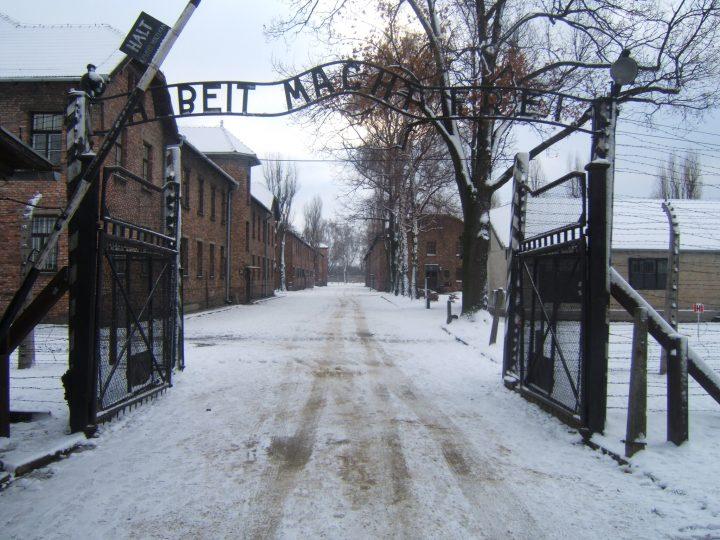 """27 gennaio: """"Memoria minacciata da impunità, negazionismo e incitamento all'odio"""""""
