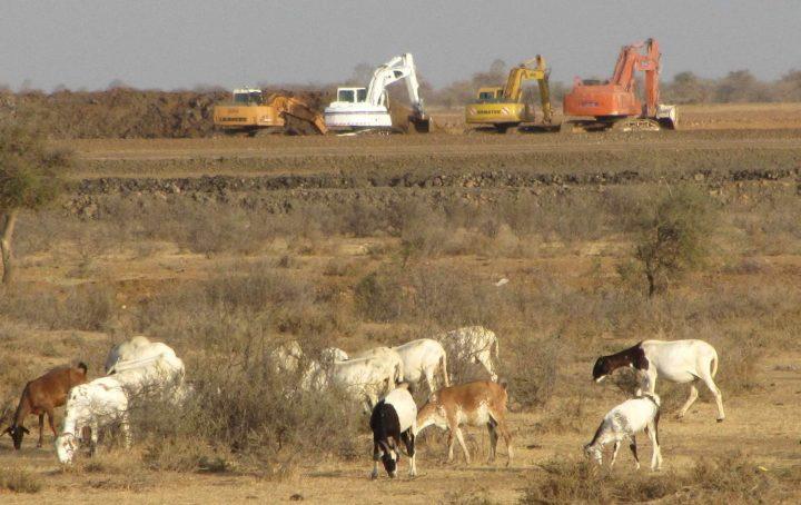 Landkauf durch reiche Länder entzieht senegalesischen Bauern die Lebensgrundlage
