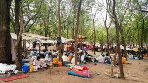 Nigeria: MSF distribuisce cibo a Maiduguri