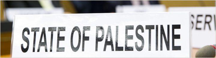 """Foto extraída de artículo publicado en la RIDH titulado """"El resultado del voto sobre Palestina en el Consejo de Seguridad: balance y perspectivas"""""""