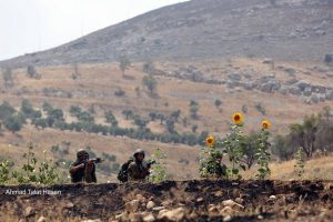 Palestina, l'UAWC vince contro l'ostruzionismo d'Israele
