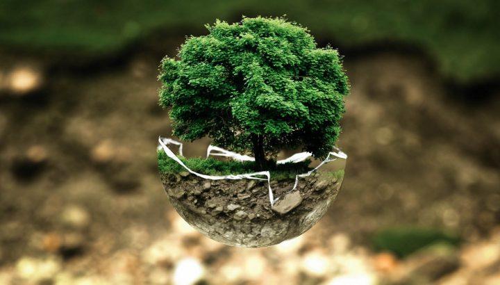 Ma qual è l'impatto della vita degli italiani sull'ambiente?