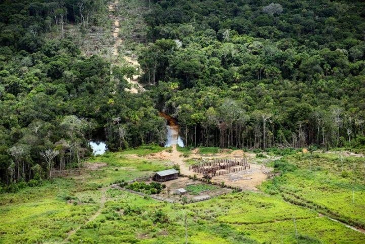 Se incendia el Amazonas, Bolsonaro no reacciona. Informe desde FM Radio Gráfica