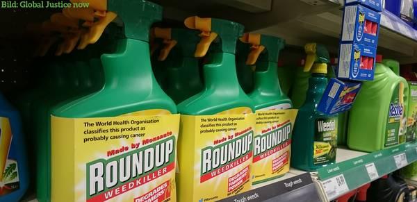 Glyphosat: ECHA ignoriert Krebsgefahr