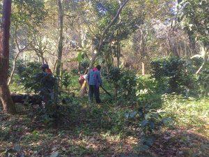 EZLN: la prima di una serie