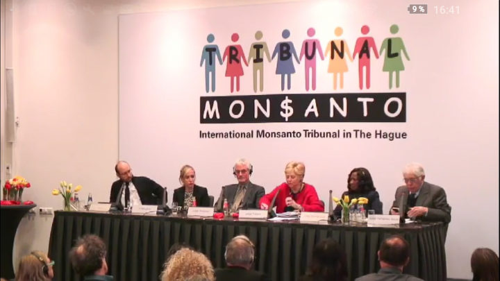 Legal opinion: Monsanto's activities have negative impact on basic human rights