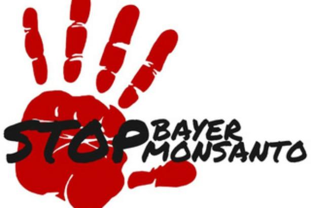 Bayer-Monsanto-Fusion bedroht bäuerliche Landwirtschaft