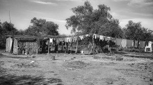 Acción urgente: juicio contra indígenas wichí sigue pendiente