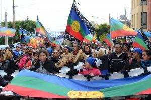 Marcha mapuche por la tierra llegó al centro del poder político provincial