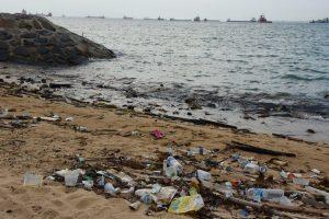Los oceános en peligro, con Baher Kamal