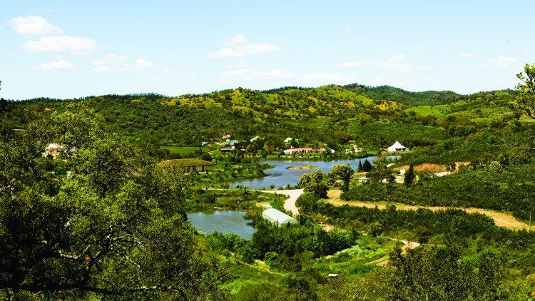 Wasserretentionslandschaft_Tamera