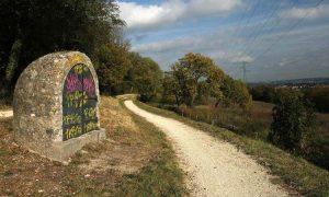 Le Bois de Bernouille : l'histoire d'une lutte réussie dans les années 90
