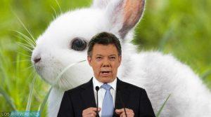 El conejo de Santos, al proceso de paz; hoy en la Corte Constitucional