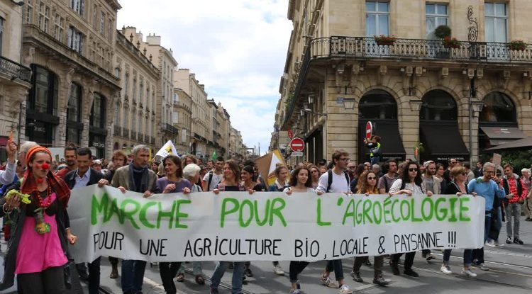 Protest for agro-ecology, against Bayer and Monsanto