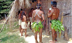 « Renforcer la conscience critique indigène »