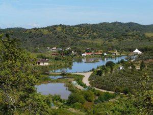 Waldbrände nachhaltig mit Wasserretentions-Landschaften beenden
