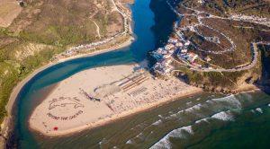 Gigantesco delfín defendió a la costa portuguesa de perforación petrolera