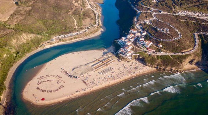 A Giant Dolphin to Defend Portugal's Coast from Offshore Drilling