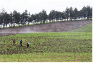 Gran Minga Nacional Agropecuaria proyecta crear 50.000 nuevas plazas de empleo en el campo ecuatoriano