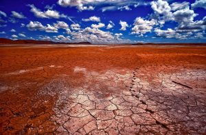 Cambiamenti climatici, esaurimento risorse, sesta estinzione di massa: siamo alla resa dei conti?