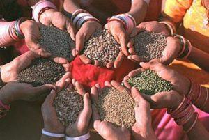 UN-Bericht: Zahl der Hungernden steigt um 38 Millionen – trotz Rekordernten