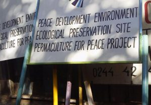 Peace-Development-Environment: Integrated?