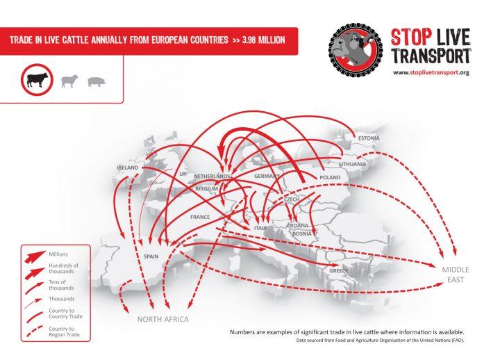 stop_live_transport_cattle_eu_map_final