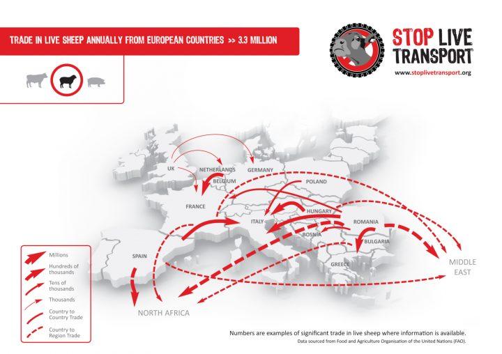 stop_live_transport_sheep_eu_map_final
