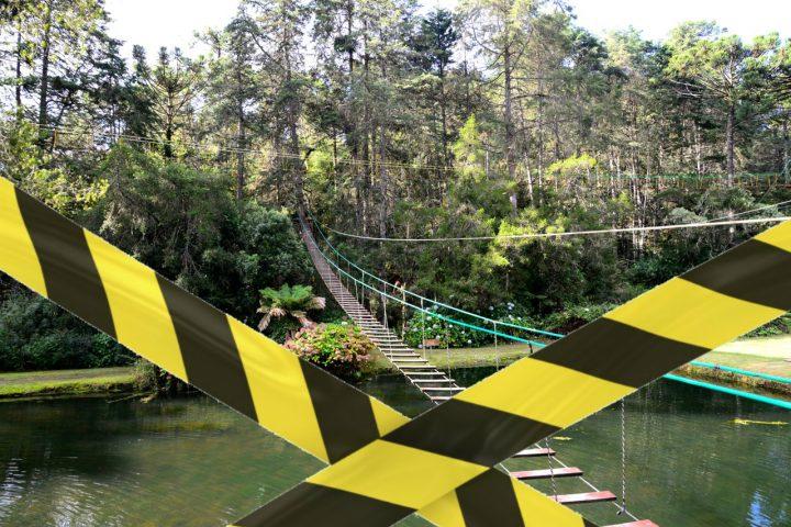 Horto Florestal é Fechado após Morte de Macaco