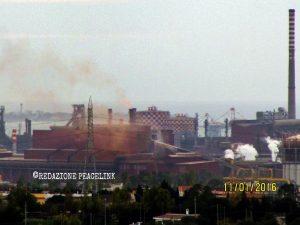 Nuovi dati su diossine e PCB nei mitili di Taranto