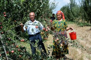 Un nuovo rapporto della FAO rivela insicurezza alimentare e problemi nutrizionali in Europa e Asia centrale