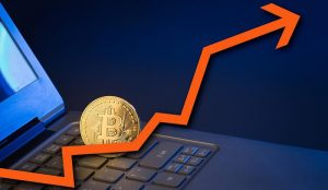 Bitcoin Frenzy: The Fever Chart Of A Deepening Crisis