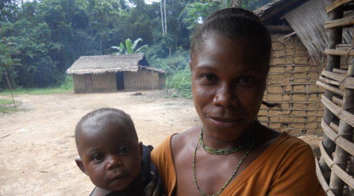 Pygmées Baka : le droit de tuer un éléphant par an